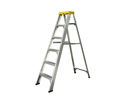 Unilateral ladder
