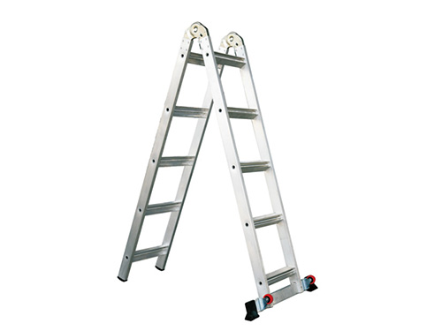 Two in one ladder